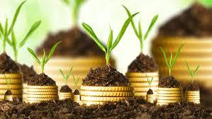 Estudos e Projectos de Investimento e Financiamento